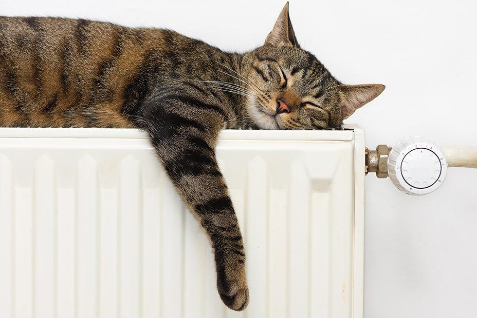 Wärmecontracting